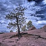 Infrared HDR 8 July 2012 Colorado Springs by Brokentaco