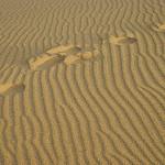 sand 105 by felizfeliz